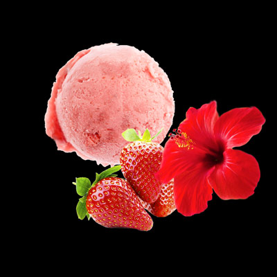 maison-h-sorbet-fraise-follore
